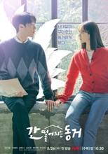 My Roommate is a Gumiho (Frightening Cohabitation / Gan Ddeoreojineun Donggeo / 간 떨어지는 동거)