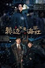 Winter Begonia (Bin Bian Bu Shi Hai Tang Hong / 鬓边不是海棠红)