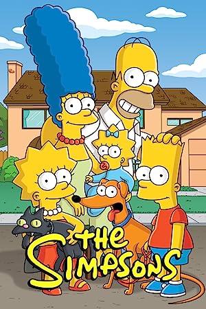 The Simpsons - Twenty-Ninth Season