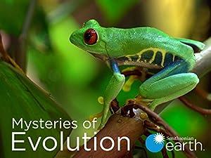 Mysteries Of Evolution - Six Part Mini Series