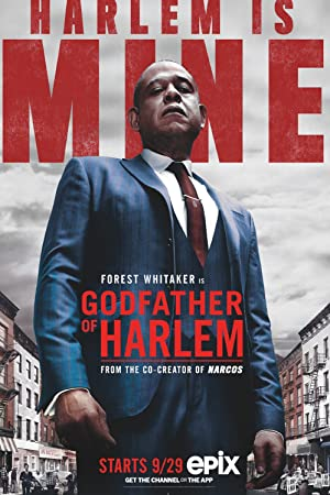 Godfather of Harlem - First Season